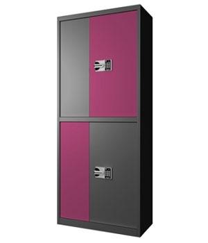 BM04国保通体双门紫套保密柜